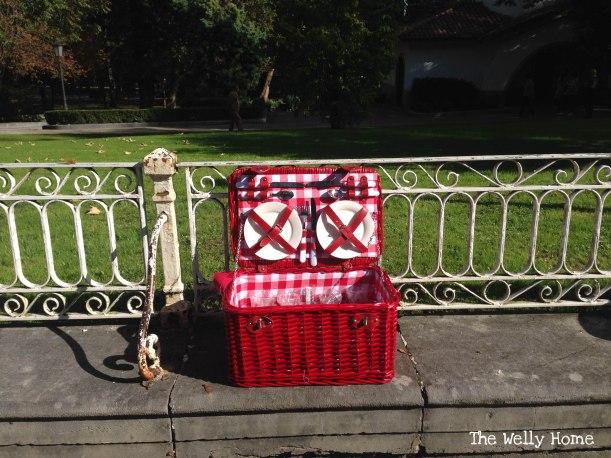 cesta de picnic roja